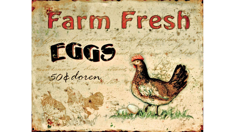 'Fresh Eggs' Tin Plaque