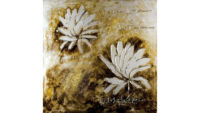 Photography of White Floral Oil Painting